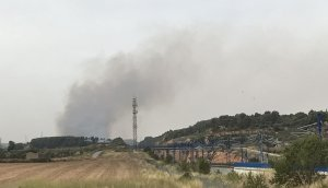 Un foc de vegetació crema a l'N-240 vora l'Espluga de Francolí.