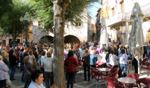 Unes 300 persones han participat en la concentració a la plaça Major de Montblanc.