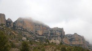 Pla obert del Montsant als peus de la Morera de Montsant, al Priorat.