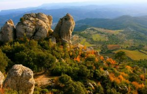 El Natural de Montsant