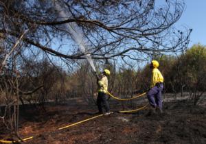 Incendi a Sant Cugat a l'estiu del 2016