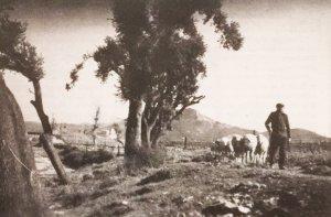 Imatge de portada del TOT nº 34