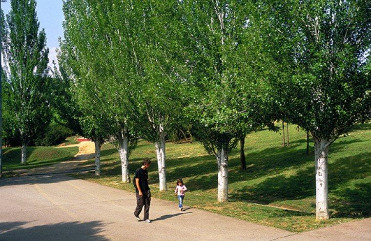 El Parc del Turonet de Cerdanyola del Vallès.