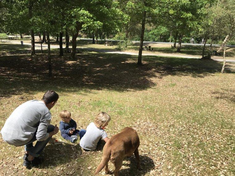Vinyet Duran, mare, comunicadora i blogger, explica els avantatges de tenir un gos.