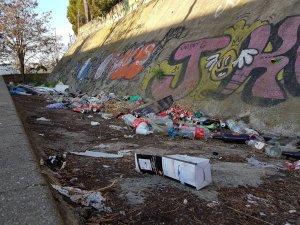 La brutícia al carrer del Bosc Tancat i Can Mitjans