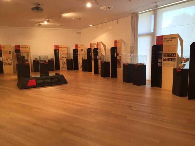 L'exposició es podrà visitar fins el 15 d'abril