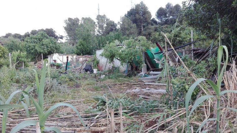 Els horts es van dessallotjar al mes de maig per l'inici de les obres de l'autopista.