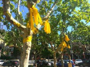 Llaços grocs a Bellaterra