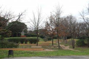 El Parc del Turonet un dia ennovulat