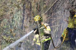 Un bomber apagant un foc al bosc