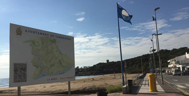 La Mora-Tamarit pretén esdevenir una Entitat Municipal Descentralitzada.