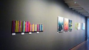 L'artista Dolors Manrubia combina colors i formes amb la creació a través del mitjà digital.