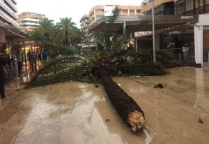 Imatges del passeig Marítim de Salou després del temporal.
