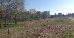 La llera del riu Francolí a Tarragona on s'ha actuat per retirar vegetació invasora i garantir la circulació de l'aigua.