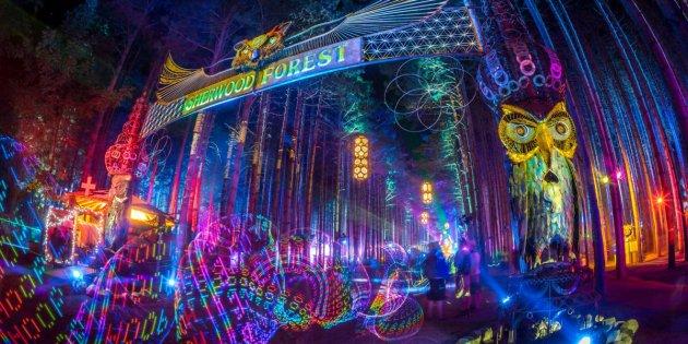 El bosque se convierte en una auténtica imagen onírica lleno de luz y sonido.