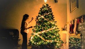Descubre este enorme árbol de navidad y su localización exacta.