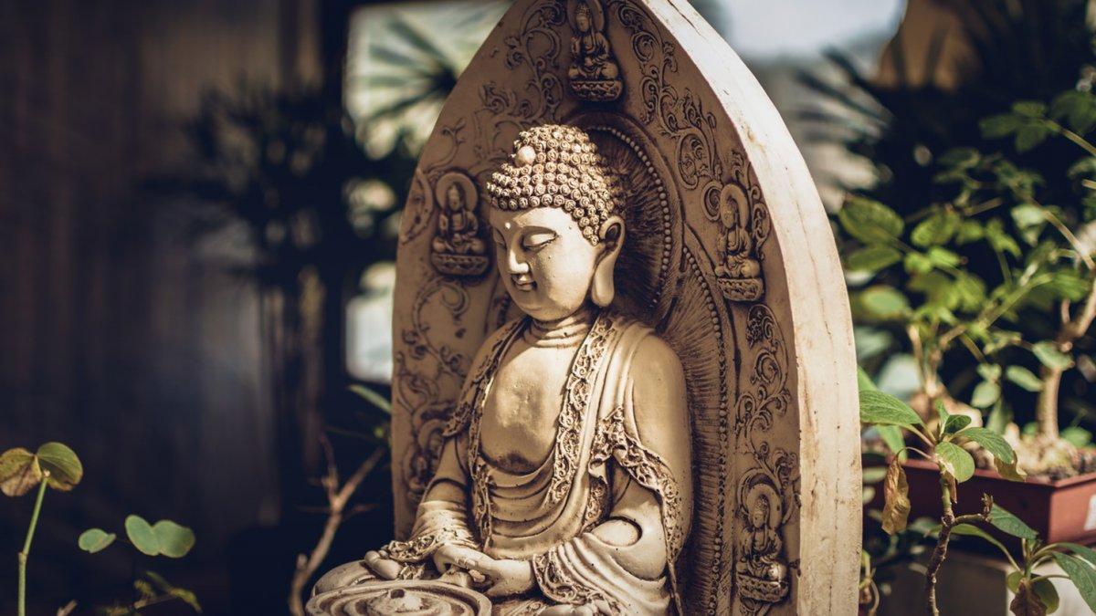 75 Frases De Buda Sobre La Paz El Amor Y La Vida