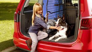 Les mascotes han de seguir unes normes de seguretat per viatjar en cotxe.