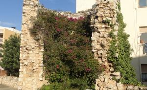 Les restes de la torre del Contoi del Vendrell.