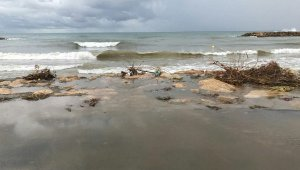 La platja de Cunit, aquest dijous al matí.