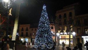 L'arbre de la plaça Nova, amb les llums de Nadal.