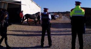 Mossos i Agents Rurals, clausurant l'hípica.