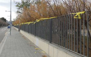 Llaços grocs al Parc de la Sínia de Calafell.