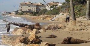 Estat actual de la platja del Francàs.