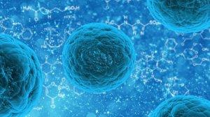 La célula es una unidad vital esencial de todo ser vivo.