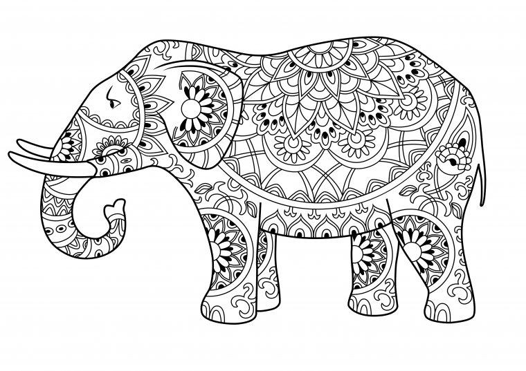 Los elefantes son un elemento habitual en estas imágenes.