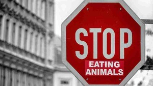 Las personas veganas rechazan el consumo de todo tipo de alimento de origen animal