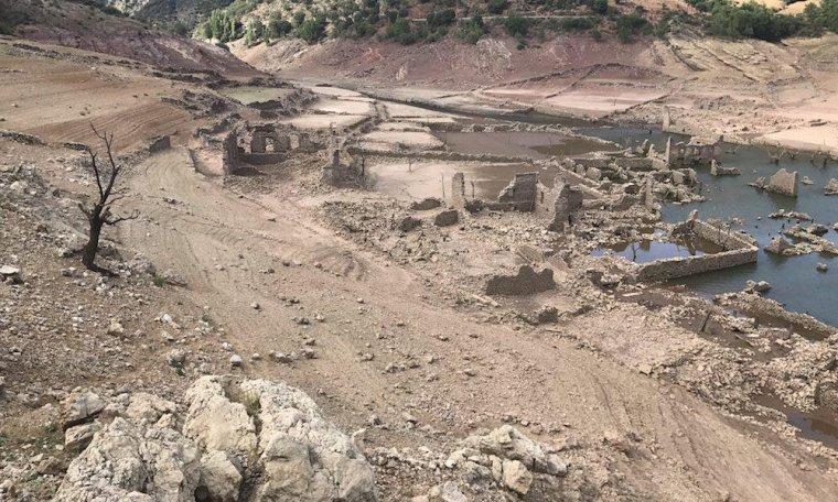 Pantano en sequía