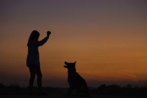El amor a los animales y su cuidado se encuentra entre los talentos de Libra