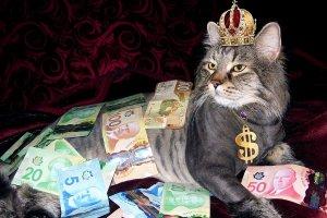 ¿Qué significa soñar con dinero? Descubre sus mensajes en nuestro diccionario de sueños