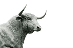 Descubre qué significa soñar con toros según nuestros diccionario de sueños