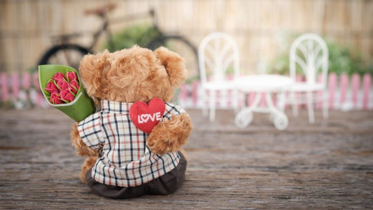 A cute teddy bear with some flowers, the perfect gift for Valentine's Day