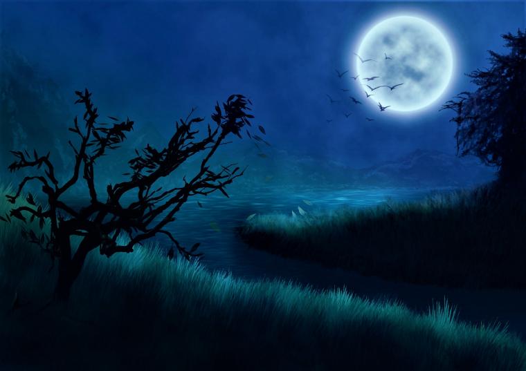 Arcano del día – La Luna (XVIII): Significado de las cartas del tarot