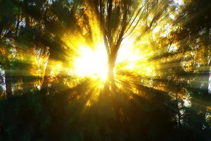 Milagros del cielo: qué son y su vinculación con la experiencia cercana a la muerte