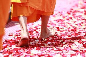 Cómo abrir caminos de prosperidad: Oraciones, meditación y rituales de magia blanca