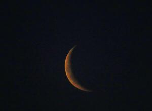 Tu predicción especial para la Luna Nueva en Sagitario