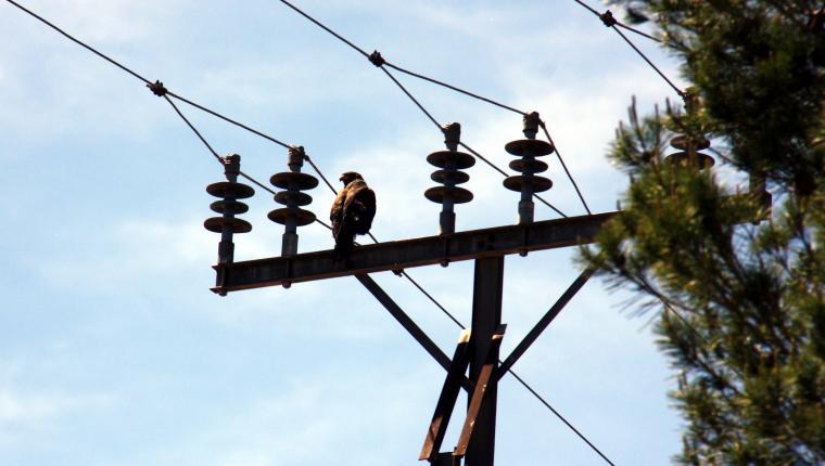 Imatge d'arxiu d'una torreta d'electricitat a Lleida