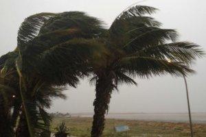 Consells a tenir en compte davant una situació de forts vents