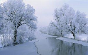 Imatges d'un riu totalment congelat