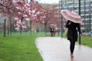 Les precipitacions podrien ser les normals per l'època