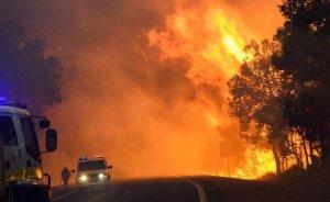 L'onada de calor està provocant importants incendis forestals
