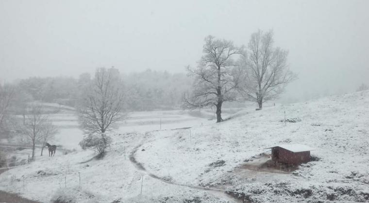 Neu a Sant Jaume de Frontanyà