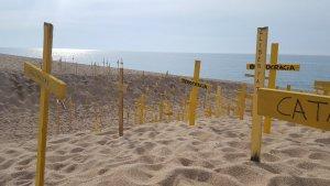 Les polèmiques creus grogues que el CDR de Canet de Mar va col·locar en una platja per escenificar la «mort» de la democràcia