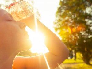 La calor d'estiu requereix prendre algunes precaucions