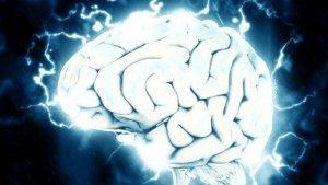 Durant el nostre dia a dia, duem a terme algunes accions que poden perjudicar el nostre cervell
