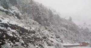 Imatge de la nevada al Montseny